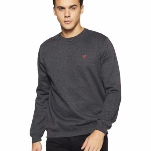 https://www.amazon.in/Allen-Solly-Sweatshirt-ASSTORGPW14019M_Anthra-Melange/dp/B07DPVHJXD/ref=sr_1_49?s=apparel&ie=UTF8&qid=1544453973&sr=1-49&keywords=sweatshirts%2Bfor%2Bmen&th=1&psc=1